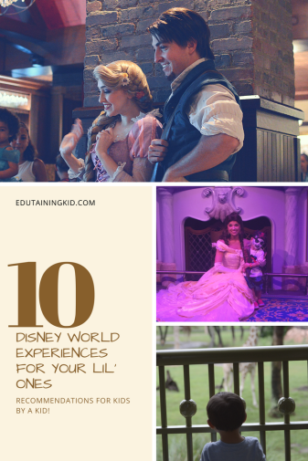 Top 10 Disney World Experiences