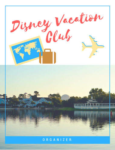DVC Organizer Cover