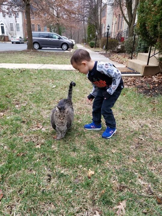 We took Rocky on lots of outdoor adventures in his last few weeks.