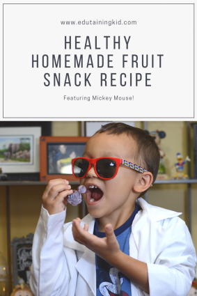 Healthy Homemade Fruit Snacks